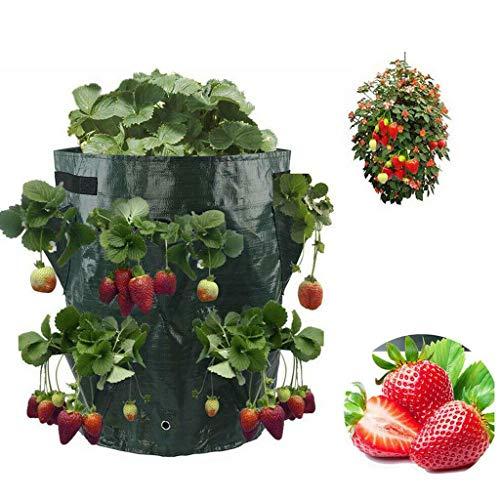 Erdbeere Pflanzsack Pflanzen Tasche,Kartoffel Pflanzsack Pflanzbeutel 10 Gallonen mit Griffen,seitliche Wachstumstaschen,dauerhaft AtmungsaktivBeutel Gemüse Grow Bag Pflanztasche