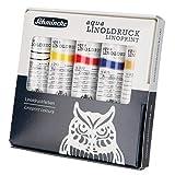 Schmincke Aqua Linol 82 710 097 - Juego de 5 envases de 20 ml