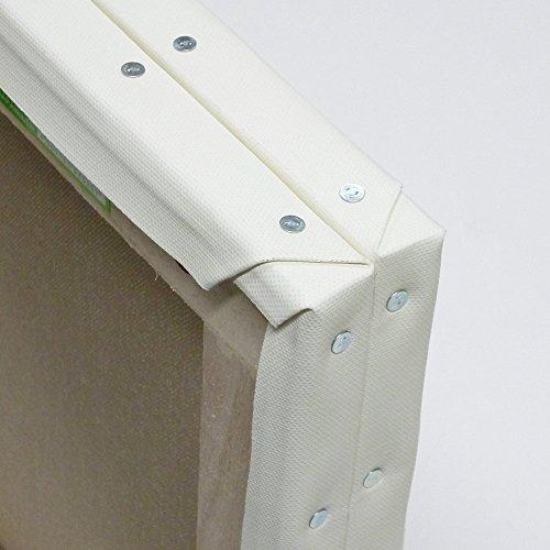 ホワイト 張りキャンバス F100 桐木枠 2枚パック