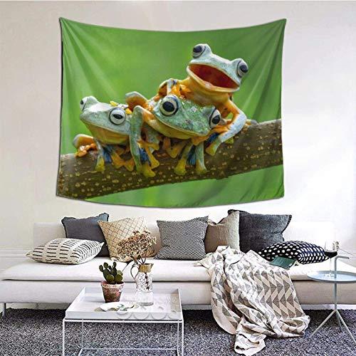 Indie - Tapiz de pared para sala de estar, dormitorio, dormitorio, decoración de dormitorio, patrón mulit-150 x 152 cm