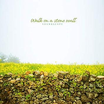 Walk On A Stone Wall