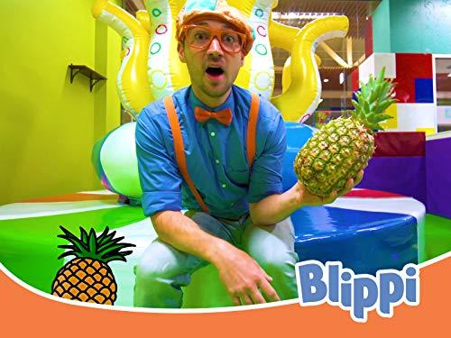 Blippi Visits an Indoor Playground (Funtastic Playtorium!) - Toddler Videos for Children