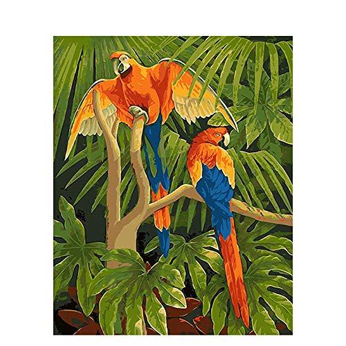 Pintar por Numeros Agapornis en rama DIY digital Cuadro al óleo para Kit de Pintura al óleo Digital para Adultos y niños de Lienzo decoración para el hogar 40x50cm Sin Marco