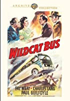 Wildcat Bus by Paul Guilfoyle