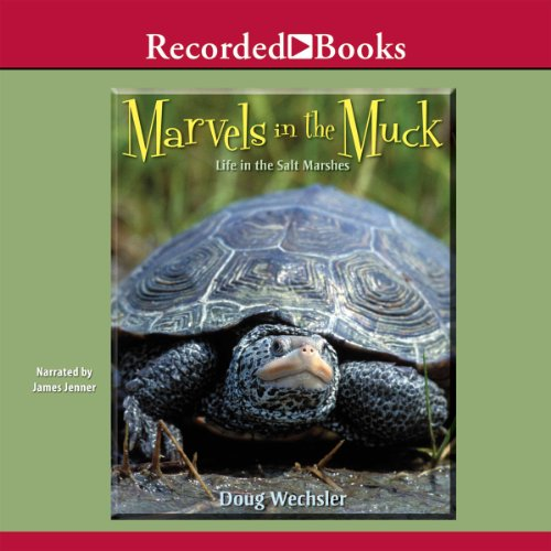 Marvels in the Muck cover art