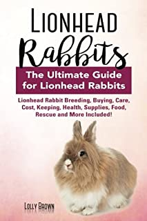 Best lionhead rabbit price Reviews