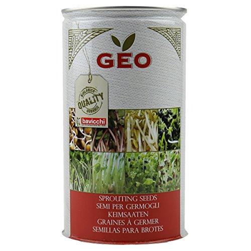 Geo Graine à Germer Poireau Brun 9,9 x 9,9 x 18 cm