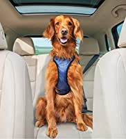 Up to 20% off on Select PetSafe Happy Ride products