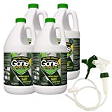 EcoClean Solutions Mold, Mildew & Algae Remover | No-Scrub Stain Remover |Instant Results for All Surfaces (4 Gallons)