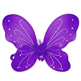 Rush Dance Butterfly Fairy Angel Wings Tinkerbell Princess Tutu Dress up Costume (One Size, Purple)