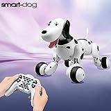 Toyshine Smart Remote Control Dog (Multicolor)