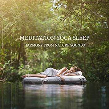 Meditation Yoga Sleep: Harmony from Nature Sounds - Relaxing Peaceful Instrumental Music, Deep Relaxation, Relieve Anxiety, and Find Peace
