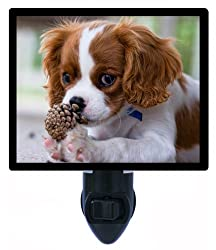 犬夜ライト – Cavalier King Charles Spaniel Puppy – ペットLED Night Light[Night Light Designs/Amazon]