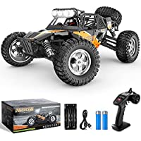 BEZGAR 4WD High Speed 42 Km/h All Terrains Electric Toy
