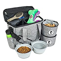 Pet travel bag with accessories