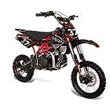 Pit Bike, Moto Cross Apollo Orion AGB-37 CRF 125 cc, 4 tempi, Ruota anteriore 35,56 cm (14'), Ruota posteriore 30,48 cm (12'), ideale per le gare - velocità massima 55 Mph