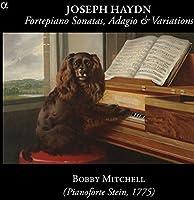 Hadyn: Fortepiano Sonatas, Ada