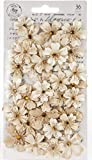 Prima Marketing 637682 Pretty Pale Paper Flowers 36/Pkg-Meadows