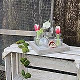 Glaskönig Vasen-Set, Geschenkset auf einem Holzbrett | Kleine Mini Blumenvasen als Tischdeko mit 5 Glasflaschen | Mini Vasen Set für einzelne Pflanzen oder Kunstblumen ganzjährig als Dekoration - 6