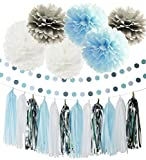 First Birthday Boy Decorations Baby Blue White Grey Baby Boy First Birthday Party