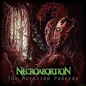 The Mutation Process