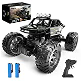 RC Cars, Holyton 4WD Off Road Monster Trucks All Terrain , 1:16 Scale Remote Control Car, 2.4GHz, 2 Rechargeable Batteries Toy Crawlers Vehicles for Children and Adults, 40+ Min Play, Gray