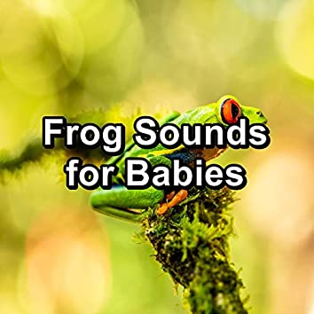 Frog Sounds for Babies