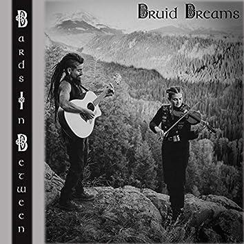 Druid Dreams