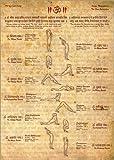 Poster 30 x 40 cm: Sonnengruß - Yoga von Sharma Satyakam -