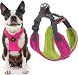 Gooby Dog Harness - Pink, Large - Convertible Sport Step-in Neoprene Small Dog Harness with Adjustable Neck Fastener - Perfect on The Go Harness for Small Dogs or Cat Harness