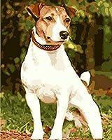 油絵 数字キットによる デジタル インテリア キャンバスの油絵子供 ホーム オフィス装飾 40x50センチ-首輪の白い犬_額装