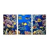 PATINISA Colorido del acuario,mostrando diferentes peces de natación,Painting Cuadro sobre Lienzo Canvas Wall Art para Colgar Impresión de la Lona 30x45cm