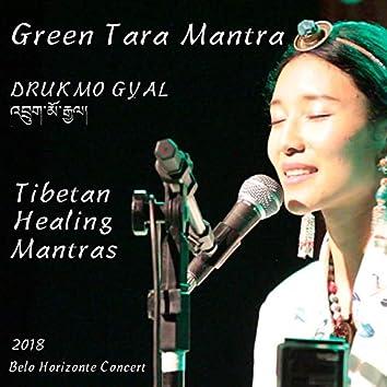 Green Tara Mantra (Tibetan Healing Mantras) [Ao Vivo em Belo Horizonte] [feat. Marcus Viana]