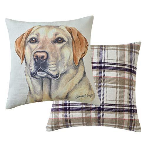Viceni Cuscino Imbottito per Cani con Labrador, 43 x 43 cm, Multicolore