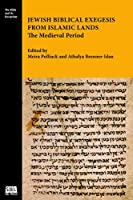Jewish Biblical Exegesis from Islamic Lands: The Medieval Period (Bible and Its Reception)