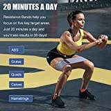 Zoom IMG-2 set di fasce elastici fitness