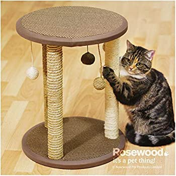 Rosewood Ensemble Grattoir Zurich pour Chat