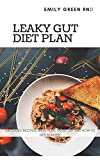 LEAKY GUT DIET PLAN: Includes recipes, meal plan, food list and how to get started
