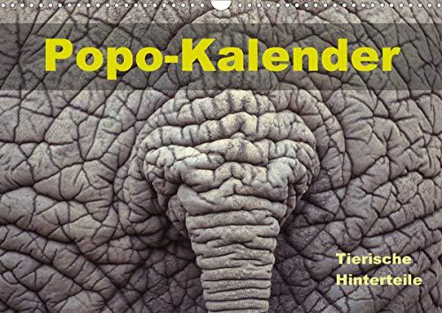 Popo-Kalender (Wandkalender 2021 DIN A3 quer)