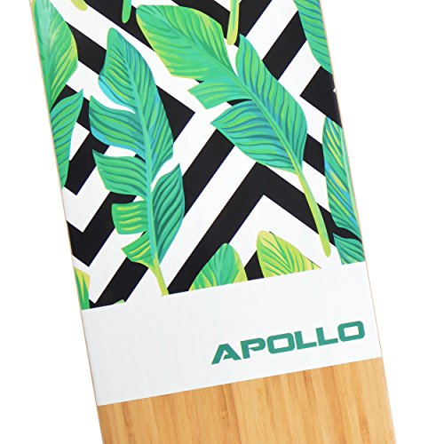 Apollo 11045