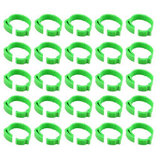 Gereton 100pcs Numbered Poultry Chicken Leg Band Clip-on Adjustable Buckle Ring for Chicken Duck Pigeon Goose (Green)