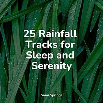 25 Rainfall Tracks for Sleep and Serenity