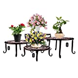 Metal Plants Stand Flowerpot Holder Iron Art Pot Holder, AISHN Flower Pot Supporting Indoor Outdoor Garden Pack of 4pcs with Different Size (Bronze)