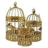 Set di Uccello Gabbia d' oro farfalla