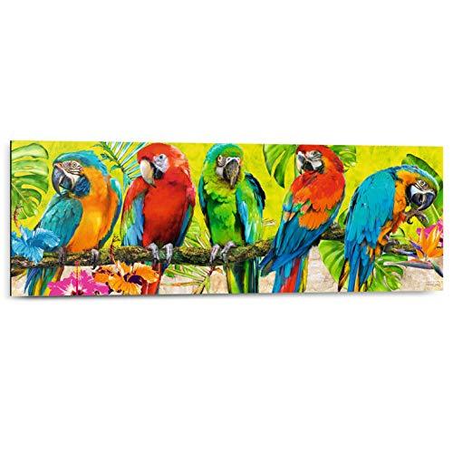 REINDERS Michael Tarin - Papageien - Wandbild 90 x 30 cm
