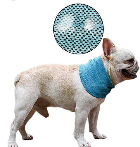 cooling collar - 5