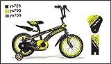 CTBIKES WARRIOR BMX KIDS BIKES