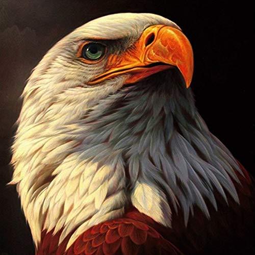 5D DIY diamante pintura águila diamante bordado Animal mosaico imagen diamantes de imitación decoración del hogar pintura A12 50x70cm