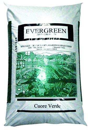 Evergreen CONCIME Minerale per Prati, SPAZI Verdi E Giardini kg 25
