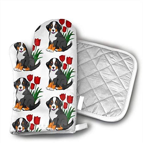 SHENLE Backhandschuhe und Topflappen Berner Sennenhund Grillhandschuhe mit rutschfesten Kochhandschuhen gefüllt mit recycelbarer Baumwolle zum Kochen, Backen und Grillen
